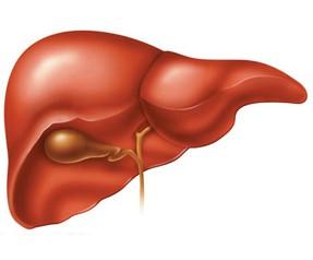 Karaciğer Yetmezliği